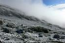 Kilimanjaro 14_18
