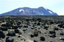 Kilimanjaro 14_9
