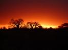 Sunsets_6